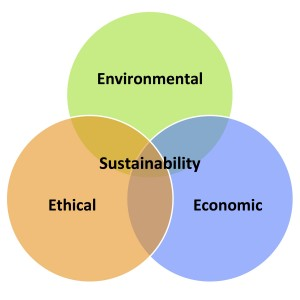 Three Stool Sustainability 3 E's
